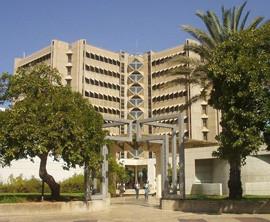 Sackler Faculty of Medicine